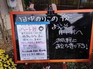 20161031_100318_HDR.jpg