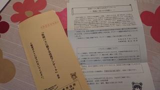 DSC_0525 (1).JPG